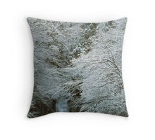 MEIGS FALLS,WINTER,GREAT SMOKY MOUNTAINS NP Throw Pillow