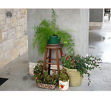 Plant Party Photographic Print