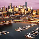 Melbourne city and Docklands at sunset by Roz McQuillan
