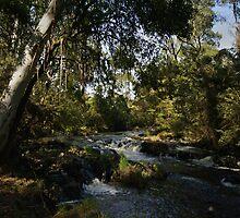 Acheron River by Rosie Appleton