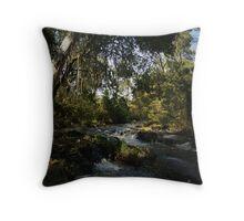 Acheron River Throw Pillow