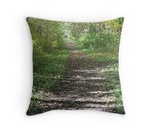Seldom Followed Throw Pillow