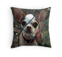 Imprisoned in the Yard Throw Pillow