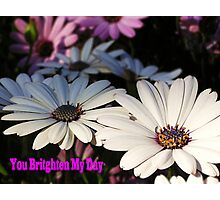 You Brighten My Day Photographic Print