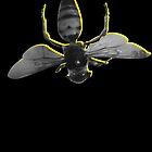 Bee Mine by Portia Greenwood