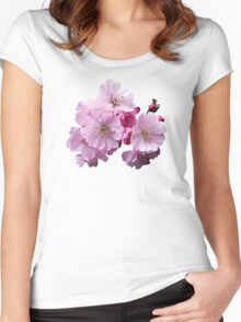 Closeup of Cherry Blossoms Women's Fitted Scoop T-Shirt