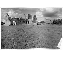 Rock of Cashel from Hore Abbey Poster