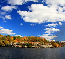 Lake Muskoka Rocky Shoreline by Dave Law