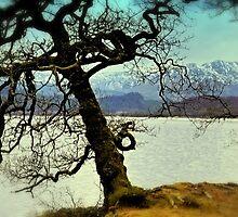 Loch Venachar by Jeremy Lavender Photography