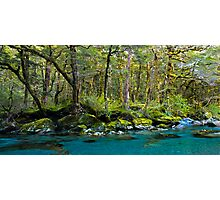 Forest and deep blue river Photographic Print