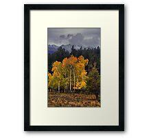 A Stormy Autumn Framed Print