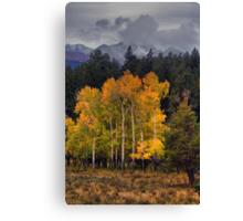 A Stormy Autumn Canvas Print