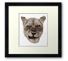 Annoyed Snarling Lion Cat Framed Print