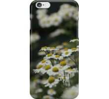 Bunga Haven's herb garden iPhone Case/Skin