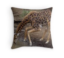 Qwa- Zulu Natal GIRAFFE Throw Pillow