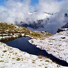 Harris Saddle, Routeburn Track, New Zealand by aerdeyn