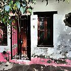 front door - entrada by Bernhard Matejka