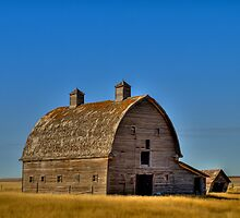 Prairie Silhouette by PFrogg