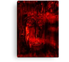silent witness Canvas Print