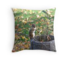 "my new friend ""chippy"" Throw Pillow"