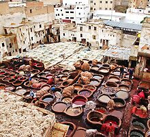 A tannery in Fes by Peter Hammer