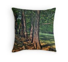 rio la silla 10 Throw Pillow