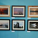 exhibition at kirkleatham museum by dougie1