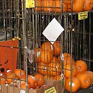 Suddenly I see Pumpkins by Andrew  Wakelin
