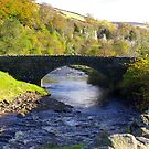 Stone Bridge at Keld,Yorkshire Dales. by Trevor Kersley