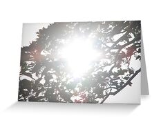 I see the light through the trees Greeting Card