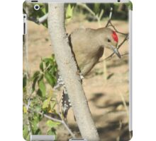 Gila Woodpecker iPad Case/Skin