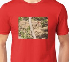 Gila Woodpecker Unisex T-Shirt