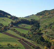 autumn landscape in austria by hkerzendorfer