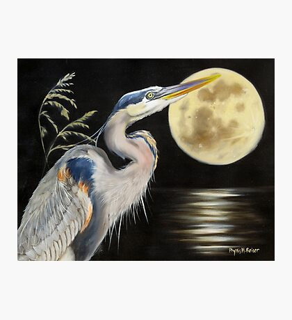 Moon Over Mississippi A Great Blue Herons Perspective Photographic Print