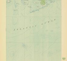 Maine USGS Historical Map Great Wass Island 306593 1921 62500 by wetdryvac