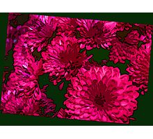 Mums the Word ll Photographic Print