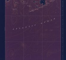 Maine USGS Historical Map Great Wass Island 306594 1921 62500 Inversion by wetdryvac