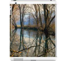 Smoky Reflection iPad Case/Skin