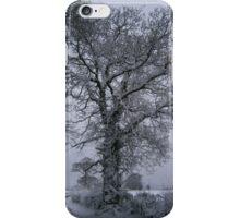 White tree iPhone Case/Skin