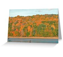 Bear River - Fall 2005 Greeting Card