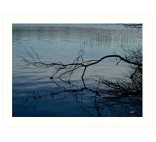 Branch on Water Art Print