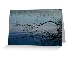 Branch on Water Greeting Card