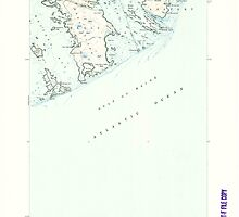 Maine USGS Historical Map Great Wass Island 460459 1950 24000 by wetdryvac