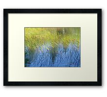 Fall Water Reeds Framed Print