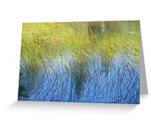 Fall Water Reeds Greeting Card