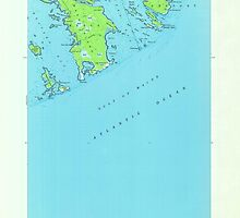 Maine USGS Historical Map Great Wass Island 806734 1950 24000 by wetdryvac