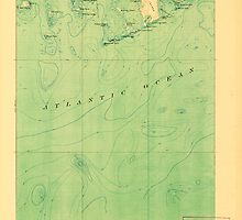 Maine USGS Historical Map Great Wass Island 807522 1921 62500 by wetdryvac