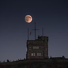 Cabot Tower by Daphne Johnson
