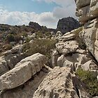 El Torcal-0934, Andalucia, Spain by Zone8