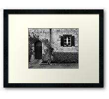 Door and window Framed Print